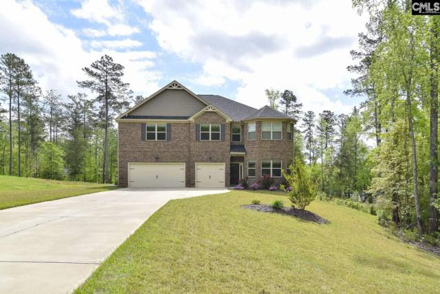 207 Summers Trace Drive, Blythewood, SC 29016 (MLS #469784) :: The Meade Team