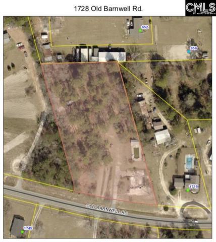 1728 Old Barnwell Road, Lexington, SC 29073 (MLS #469832) :: The Meade Team