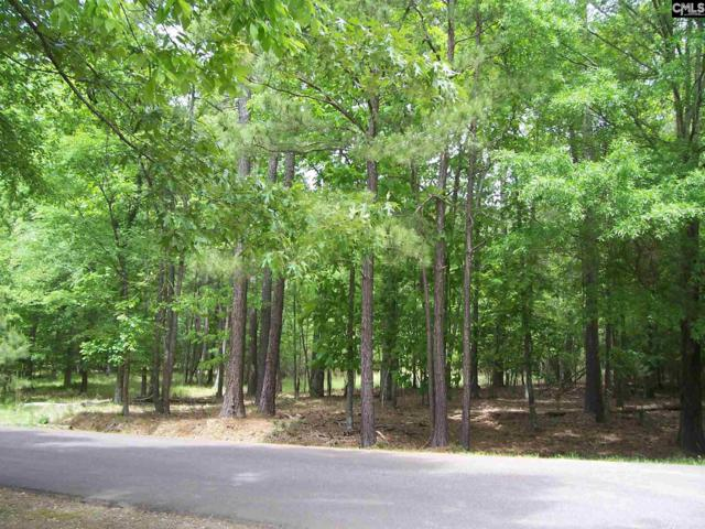 230 Tortoise Trail #132, Batesburg, SC 29006 (MLS #469853) :: EXIT Real Estate Consultants