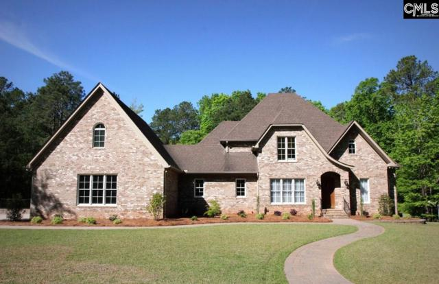 125 Watersong Lane, Irmo, SC 29063 (MLS #469858) :: EXIT Real Estate Consultants