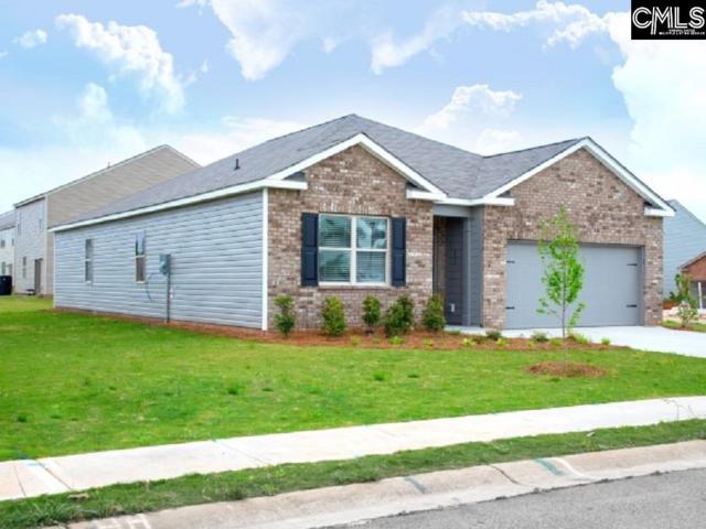 203 Barony Place Drive, Columbia, SC 29229 (MLS #470010) :: Home Advantage Realty, LLC