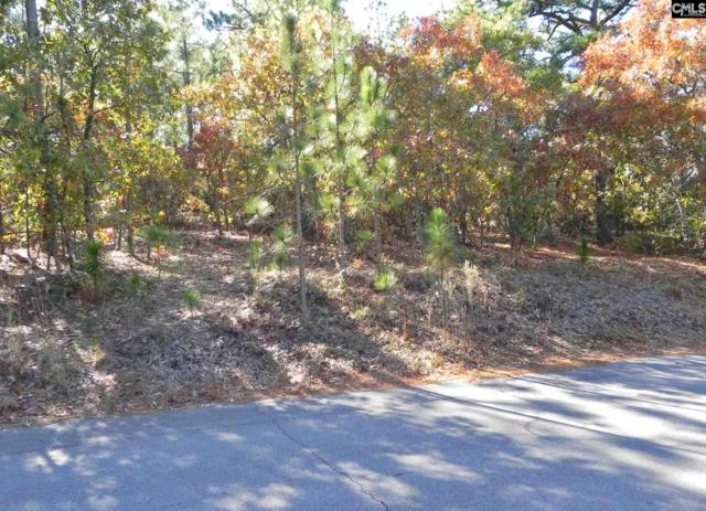 220 Valley Springs Road, Columbia, SC 29223 (MLS #470038) :: EXIT Real Estate Consultants