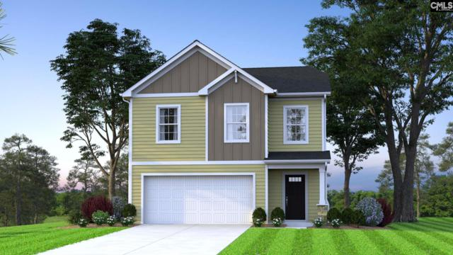 224 Shell Mound Court, West Columbia, SC 29170 (MLS #470084) :: EXIT Real Estate Consultants