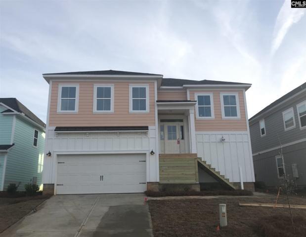 362 Cabana Way, Lexington, SC 29072 (MLS #470137) :: EXIT Real Estate Consultants