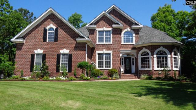 36 Gallantry Court, Irmo, SC 29063 (MLS #470240) :: EXIT Real Estate Consultants