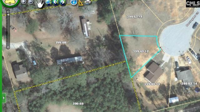 122 Barrington Circle, Newberry, SC 29108 (MLS #470261) :: EXIT Real Estate Consultants