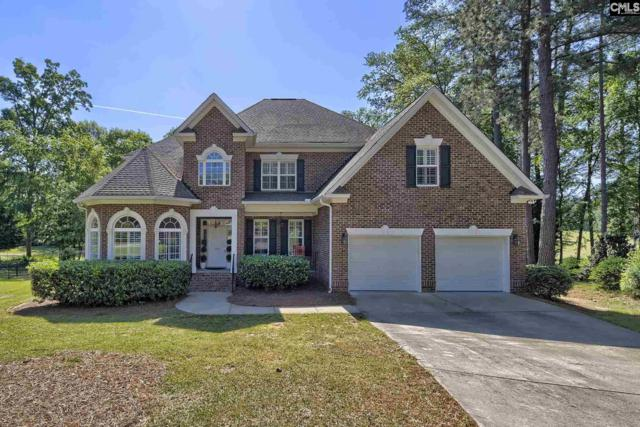 120 Oak Trace Court, Chapin, SC 29063 (MLS #470293) :: EXIT Real Estate Consultants