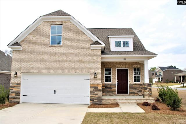 120 Cedar Chase Lane, Irmo, SC 29063 (MLS #470520) :: EXIT Real Estate Consultants