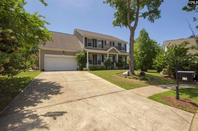 15 White Clover Court, Irmo, SC 29063 (MLS #470530) :: EXIT Real Estate Consultants