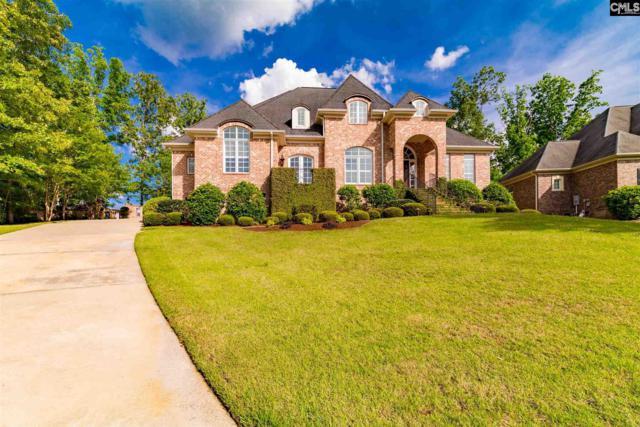 74 Halma Court, Irmo, SC 29063 (MLS #470541) :: EXIT Real Estate Consultants