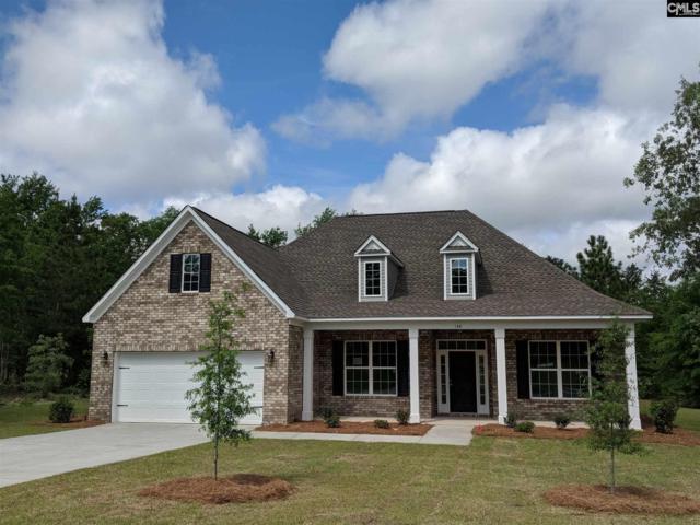 148 Living Waters Boulevard, Lexington, SC 29073 (MLS #470563) :: Home Advantage Realty, LLC