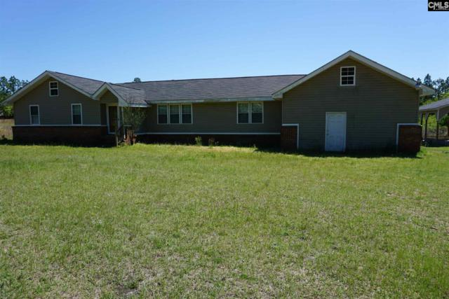 185 Windsong Lane, Pelion, SC 29123 (MLS #470647) :: The Olivia Cooley Group at Keller Williams Realty