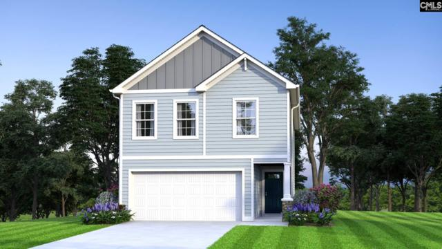 133 Plum Orchard Drive, West Columbia, SC 29170 (MLS #470701) :: EXIT Real Estate Consultants