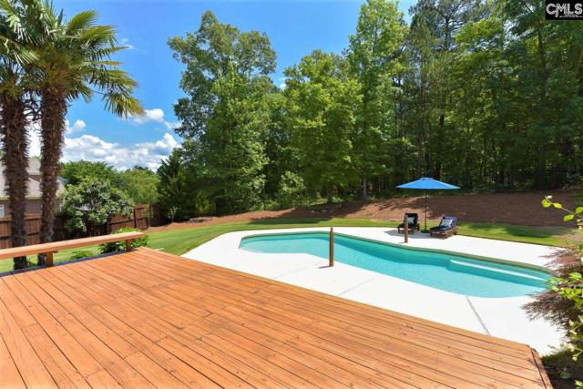 221 Ascot Glen Road, Irmo, SC 29063 (MLS #470783) :: EXIT Real Estate Consultants