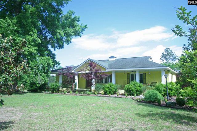 13 Winding Road, Wagener, SC 29164 (MLS #470929) :: EXIT Real Estate Consultants