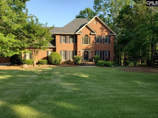 113 Rolling Creek Circle, Irmo, SC 29063 (MLS #470961) :: EXIT Real Estate Consultants