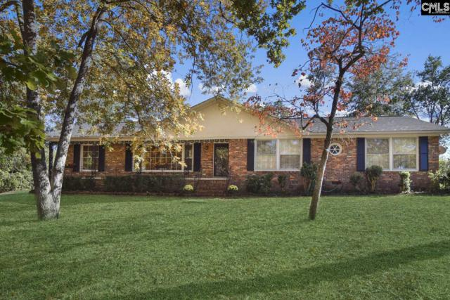354 S Stonehedge Drive, Columbia, SC 29210 (MLS #471159) :: EXIT Real Estate Consultants