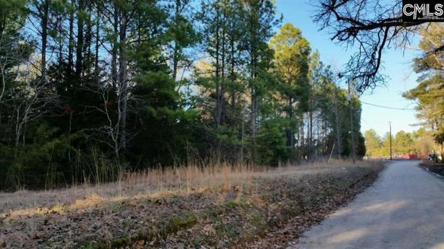 Chapin Road, Chapin, SC 29036 (MLS #471221) :: Loveless & Yarborough Real Estate