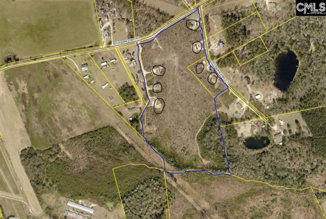 651 Bridgewater Court, Batesburg, SC 29006 (MLS #471309) :: EXIT Real Estate Consultants