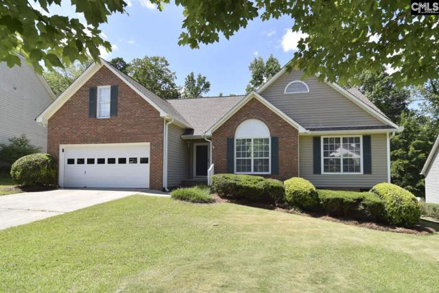 214 Kings Creek Road, Irmo, SC 29063 (MLS #471342) :: EXIT Real Estate Consultants