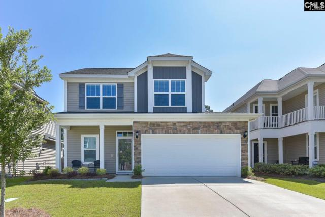 511 Slices Way, Chapin, SC 29036 (MLS #471413) :: EXIT Real Estate Consultants