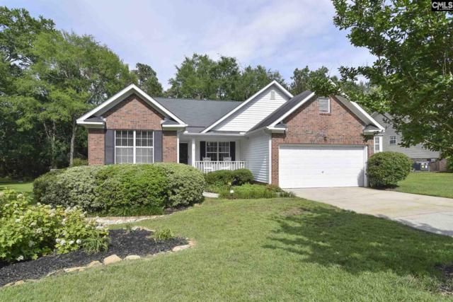 220 Gleneagle Circle, Irmo, SC 29063 (MLS #471478) :: Resource Realty Group
