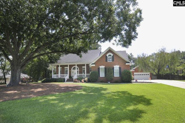 101 Wintergreen Ct, Lexington, SC 29072 (MLS #471485) :: EXIT Real Estate Consultants