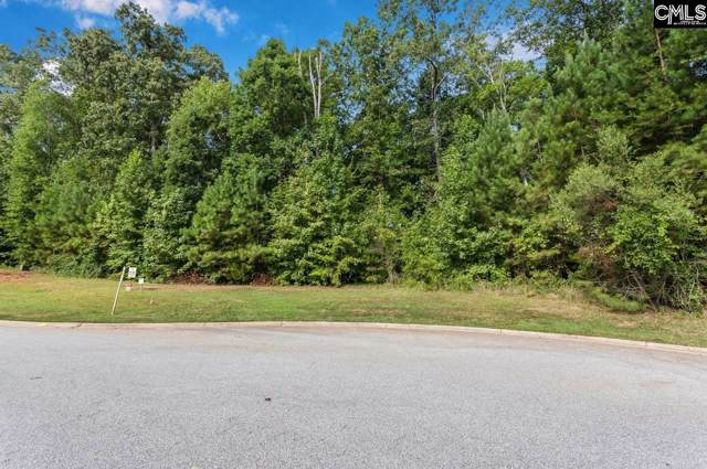251 Brookwood Forest Drive, Blythewood, SC 29016 (MLS #471501) :: The Olivia Cooley Group at Keller Williams Realty