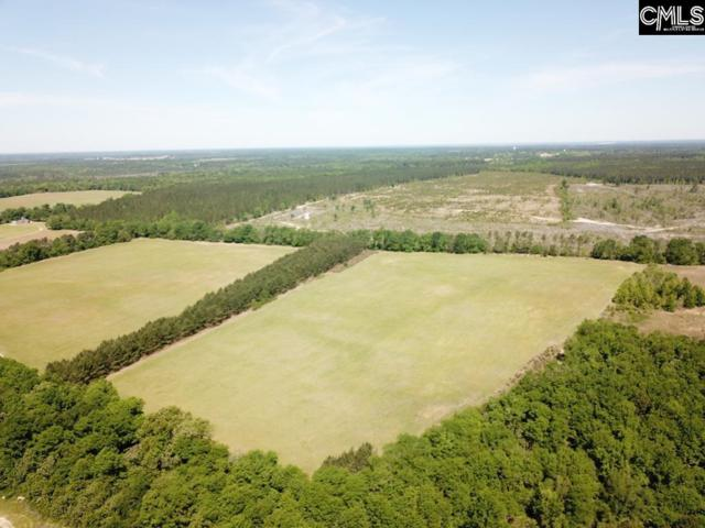 TBD South Dixie Road, Wagener, SC 29164 (MLS #471514) :: EXIT Real Estate Consultants