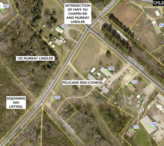 102 Murray Lindler Road, Chapin, SC 29036 (MLS #471546) :: Resource Realty Group