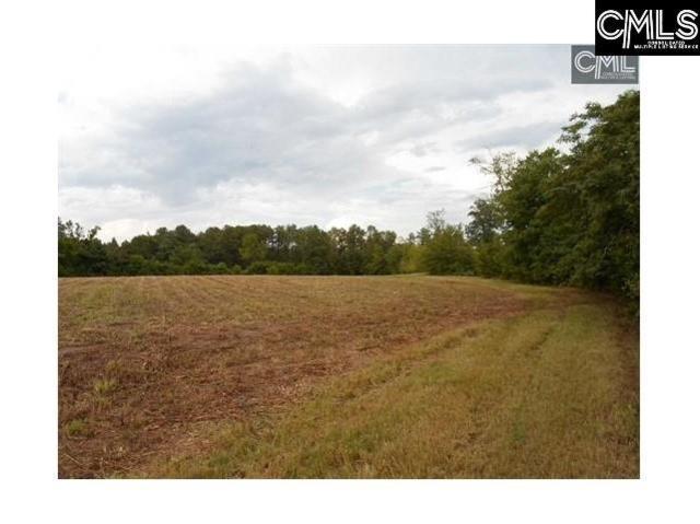 TBD Quinton Ricard Road, Leesville, SC 29070 (MLS #471549) :: EXIT Real Estate Consultants