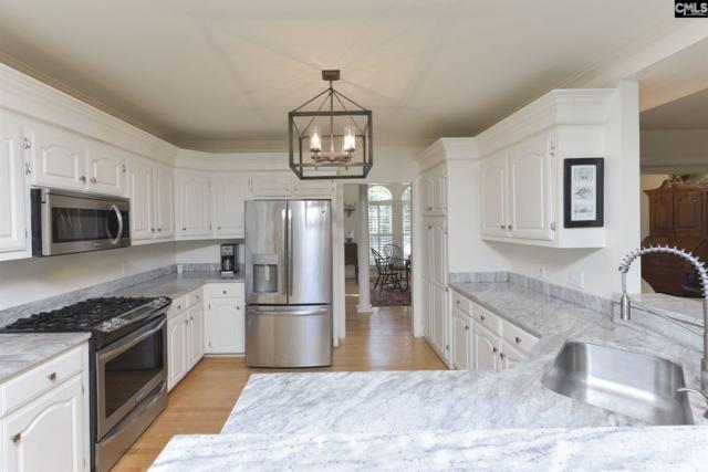 1039 Night Harbor Circle, Chapin, SC 29036 (MLS #471554) :: EXIT Real Estate Consultants