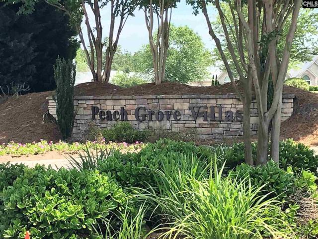 138 Peach Grove Circle, Elgin, SC 29045 (MLS #471577) :: Fabulous Aiken Homes & Lake Murray Premier Properties