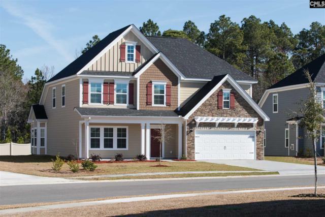 178 Aldergate Drive 12, Lexington, SC 29073 (MLS #471594) :: EXIT Real Estate Consultants