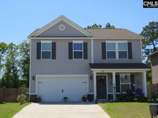 559 Kimpton Drive, Columbia, SC 29223 (MLS #471637) :: The Meade Team