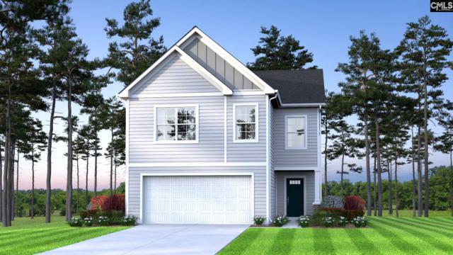 223 Nehemiah Road, Lexington, SC 29072 (MLS #471642) :: EXIT Real Estate Consultants