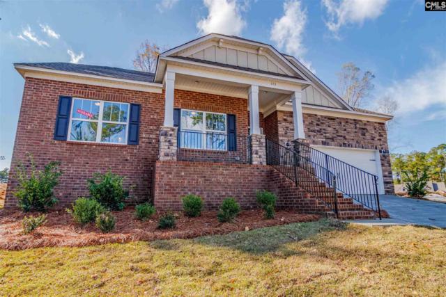 173 Cedar Chase Lane, Irmo, SC 29063 (MLS #471656) :: EXIT Real Estate Consultants