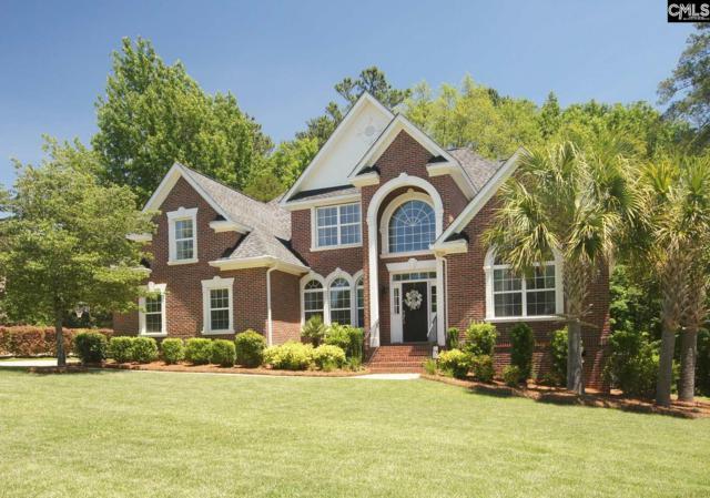 117 Magnolia Key Drive, Chapin, SC 29036 (MLS #471672) :: EXIT Real Estate Consultants
