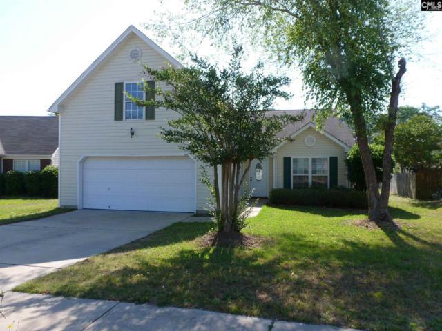 120 Torrisdale Drive, Lexington, SC 29073 (MLS #471696) :: Resource Realty Group