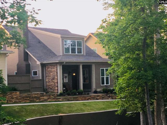 119 Downstream Way, Lexington, SC 29072 (MLS #471721) :: EXIT Real Estate Consultants