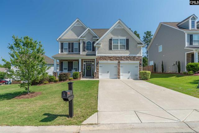 227 Mill House Lane, Lexington, SC 29072 (MLS #471749) :: EXIT Real Estate Consultants