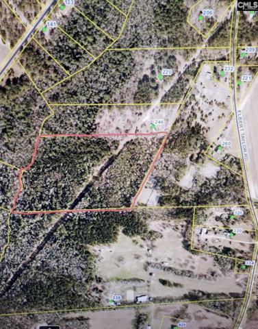 0 Elbert Taylor Road, Gilbert, SC 29054 (MLS #471777) :: EXIT Real Estate Consultants
