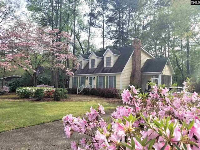205 Irongate Drive, Columbia, SC 29223 (MLS #471780) :: The Olivia Cooley Group at Keller Williams Realty