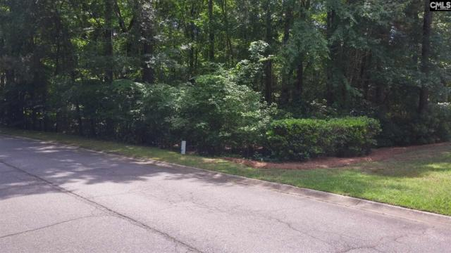 335 Night Harbor Drive, Chapin, SC 29036 (MLS #471895) :: EXIT Real Estate Consultants