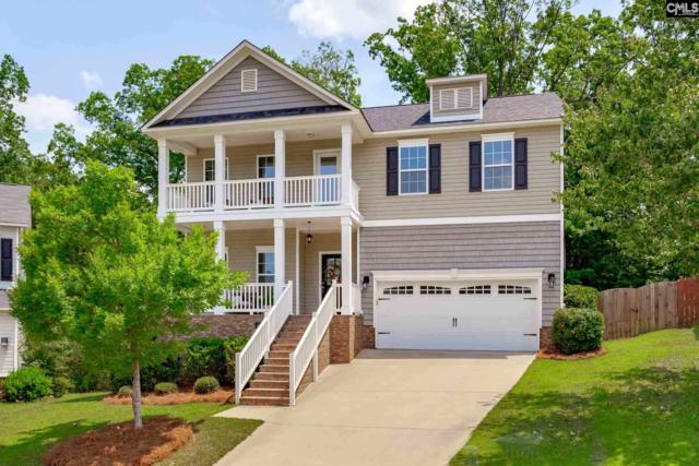 56 Doland Court, Irmo, SC 29063 (MLS #471900) :: The Olivia Cooley Group at Keller Williams Realty