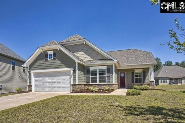 1196 Portrait Hill Drive, Chapin, SC 29036 (MLS #471928) :: EXIT Real Estate Consultants