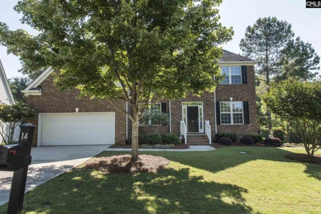 14 Ash Court, Irmo, SC 29063 (MLS #471971) :: EXIT Real Estate Consultants