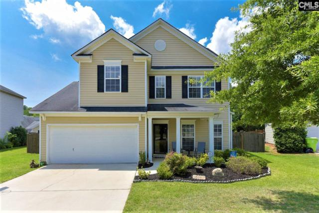 352 Foxport Drive, Chapin, SC 29036 (MLS #472056) :: The Olivia Cooley Group at Keller Williams Realty