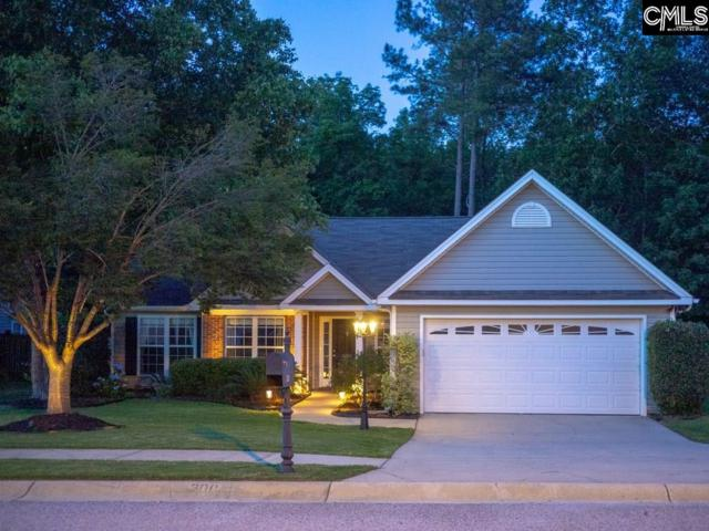 300 Loskin Lane, Lexington, SC 29073 (MLS #472058) :: The Meade Team