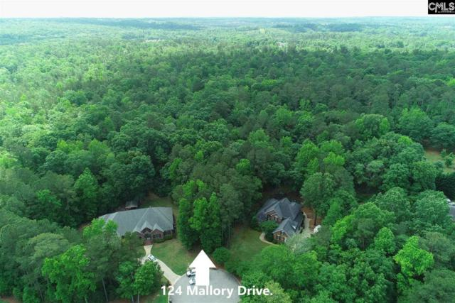 124 Mallory Drive #8, Lexington, SC 29072 (MLS #472062) :: The Olivia Cooley Group at Keller Williams Realty